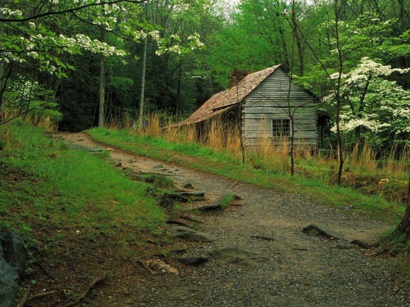 cabin in va