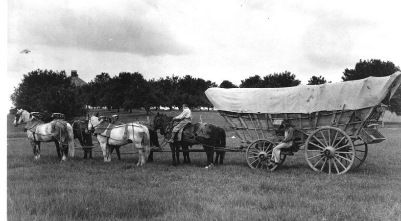 wagon (1)