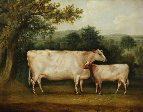 (c) National Trust, Calke Abbey; Supplied by The Public Catalogue Foundation