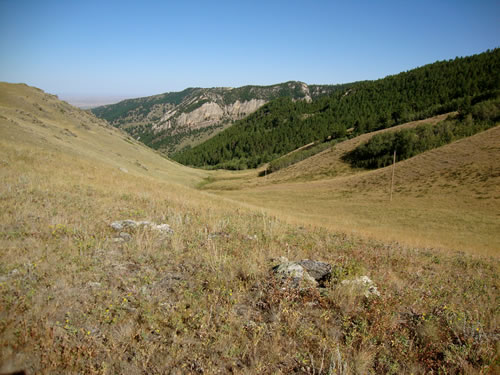 Buffalo-Mosier-Gulch