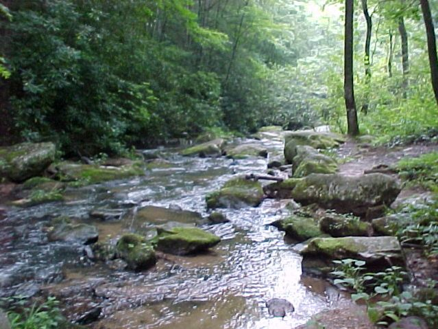 fall_creek_2
