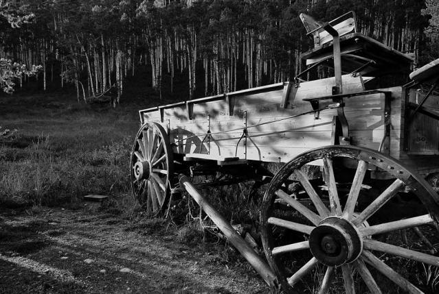 wagon555